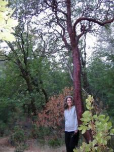 Elizabeth and an Arctostaphylos densiflora outside of Calistoga