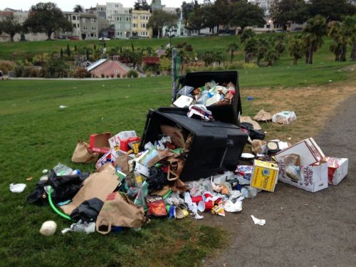 A now near-iconic image of Dolores Park Trash