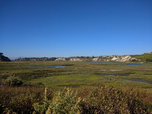 marshplain